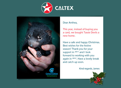 Happy Holidays Caltex Custom eCard for Business